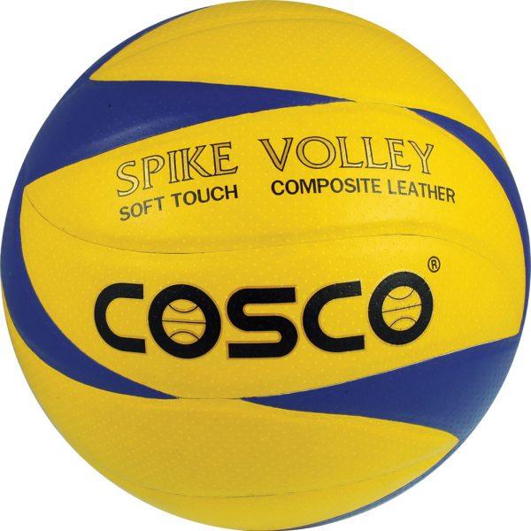 spike volleyball - meerut